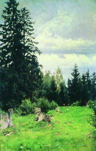 Ели. 1890. Х., м. 101×66см. Харьковский художественный музей