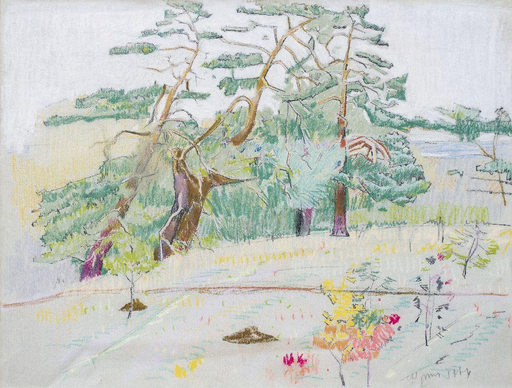 С.Григорьев. Старые сосны вКонче-Заспе. 1964. Б., пастель. 48×62см. Частное собрание