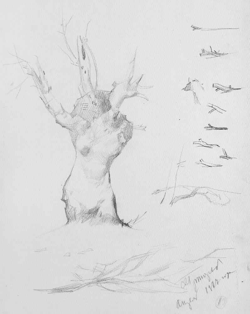С.Григорьев. Рисунок «Русалка полевая». 1977. Б., кар.