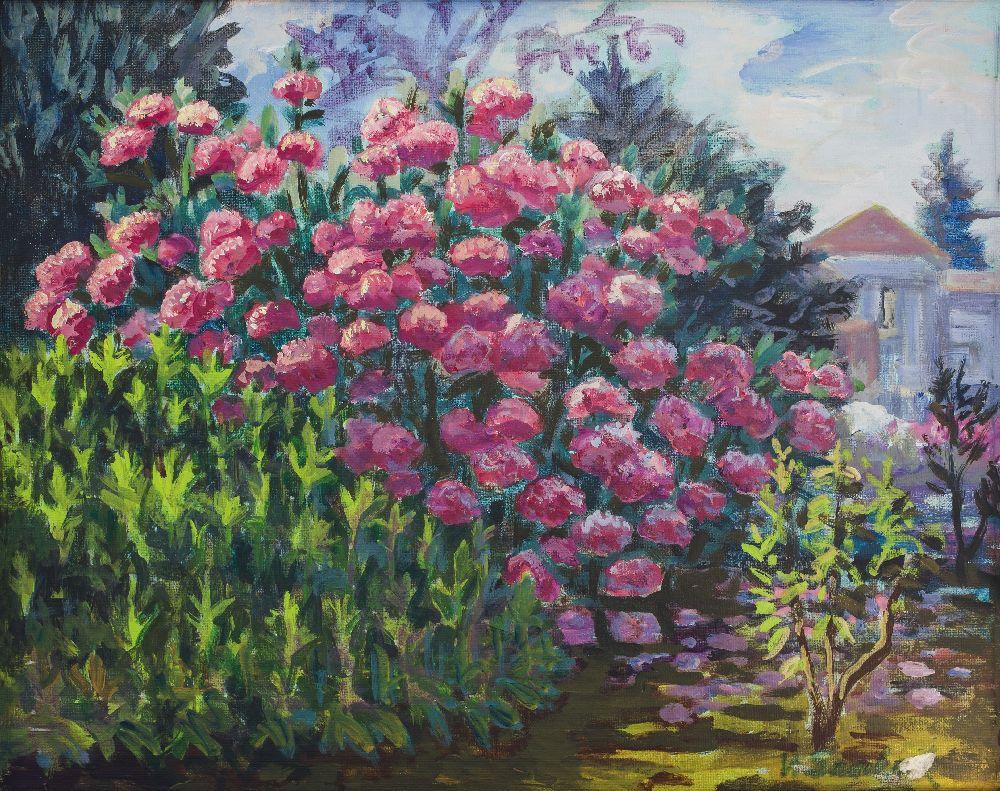 Квітучий рододендрон. Картон, олія. 38×50см