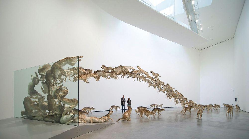 ЦайГоцян. Лобовое столкновение. 2006. Стекло, 99 муляжей волков. Инсталляция для«Немецкого Гуггенхайма»