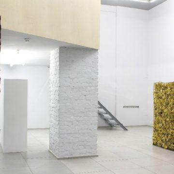 Проект «Реальность. Чёрное. Белое. Зелёное». 2010. Арт-центр «Я Галерея»